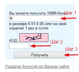 Бонусы от Расчетного сервиса WMT24
