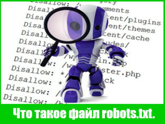 Что такое файл robots.txt.